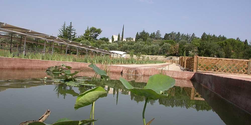 Caumont sur durance photos horizon provence for Caumont sur durance jardin romain