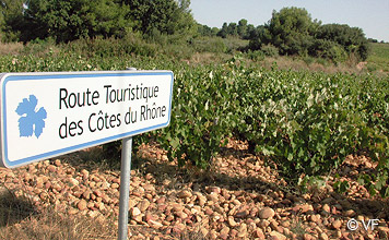 Liste de vins et domaines ch teauneuf du pape provence - Office de tourisme chateauneuf du pape ...